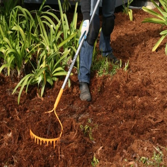Mulching | Lawn & Pest Control Xperts