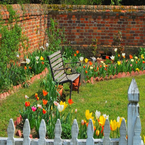 Spring Clean Up | Lawn & Pest Control Xperts