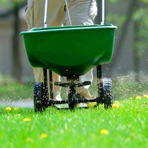 lawn fertilizer kenosha, kenosha weed control, herbicide kenosha